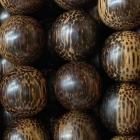 Kokosholz
